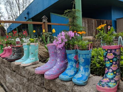 cute planted boots made by participants